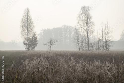 Leinwanddruck Bild Winterliche Landschaft im Münsterland