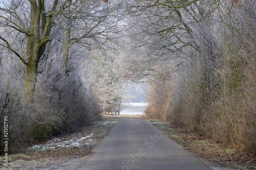 Leinwanddruck Bild Winter