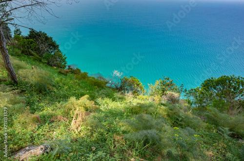 Fotobehang Tropical strand Sicilian Summer Landscape near Cefalù