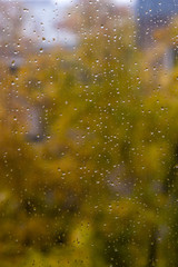 Raindrops on the window / weather characteristic autumn