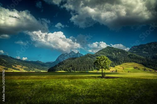 Fotobehang Nachtblauw landscape