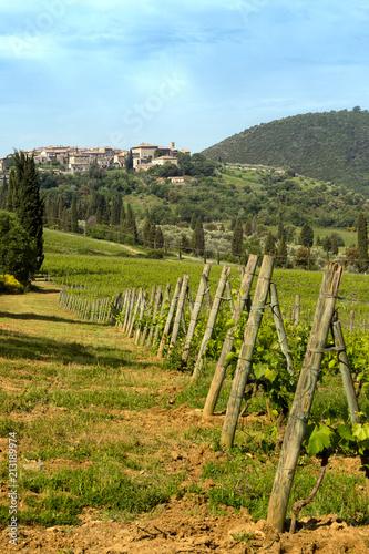 Canvas Toscane San Antimo vineyards in Tuscany