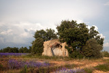 Old shed in Provence - 213191147