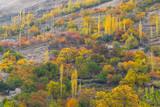 Beautiful color of tree in autumn season in Nagar valley in Pakistan