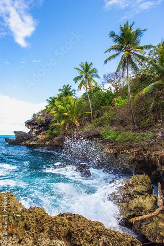 Wild tropical rocky shore, bay, lagoon. © batechenkoff