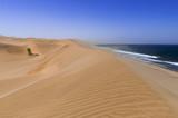 Dunes on the Skeleton Coast / Sandstorm on the Skeleton Coast, dunes to the Atlantic Ocean, Namib Desert, Namibia, Africa. - 213217516