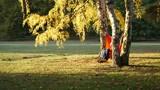 Unidentified couple relaxing in a hammock in a park - 213220751