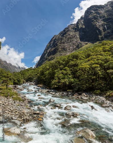 Foto Spatwand Bergrivier Stunning scenery of a pure mountain stream near Milford Sound, South Island, New Zealand