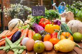 Vegetables Bio - vegetable garden