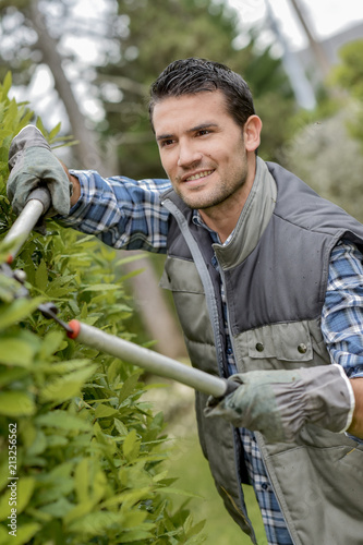 Gardener cutting hedge with secateurs