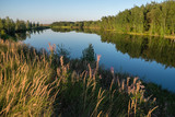 Summer rural landscape with lake and forest - 213290990
