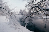 Winter landscape with river and frozen trees - 213291371
