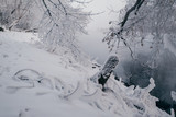 Winter landscape with river and frozen trees - 213291378