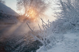 Winter landscape with iced trees. - 213291504