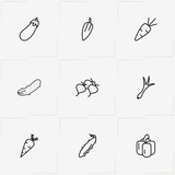 Vegetables line icon set with eggplant , cucumber and radish - 213318912