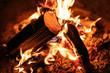 Nahaufnahme Feuer, Flammen und Glut durch brennendes Holz - 213327941