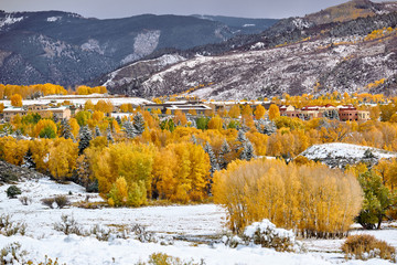 Season changing, first snow and autumn trees