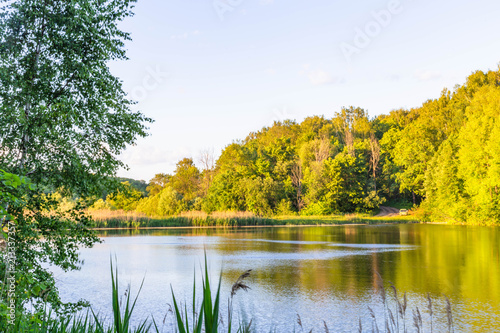 Fotobehang Meloen pond in the forest at sunset