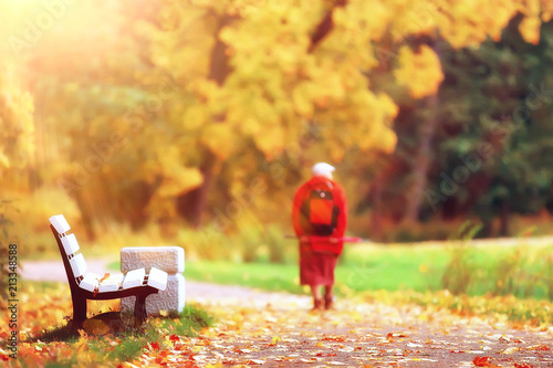 Fotobehang Meloen landscape autumn rays of the sun / beautiful landscape nature of Indian summer, yellow forest and sun