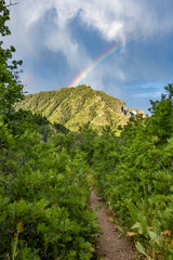 Rainbow behind Utah mountain at dawn © josephsjacobs