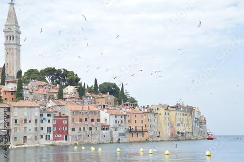 Rovinj in Croatia - 213412932