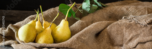 Fresh ripe organic pears on rustic wooden table, natural background, vega, diet food. Autumn harvest. Juicy fruits on bag.