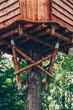 Parcours d'accrobranche dans la forêt - 213443939