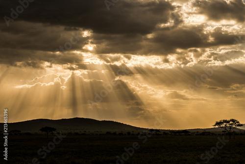 Fototapeta Cloudy dramatic sunset in african savannah