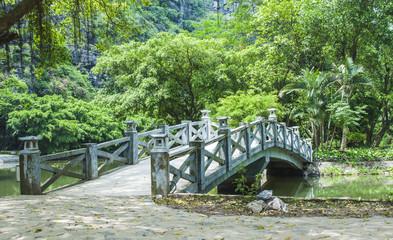 Bridge in the forest © Sergio Durango
