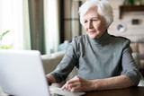 Attractive senior woman with white hair sitting at the table and looking at computer - 213475974