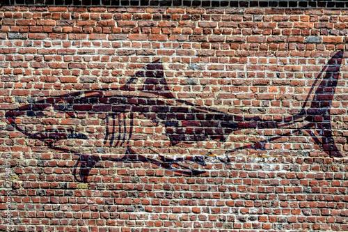 Graffiti représentant un requin - 213488750