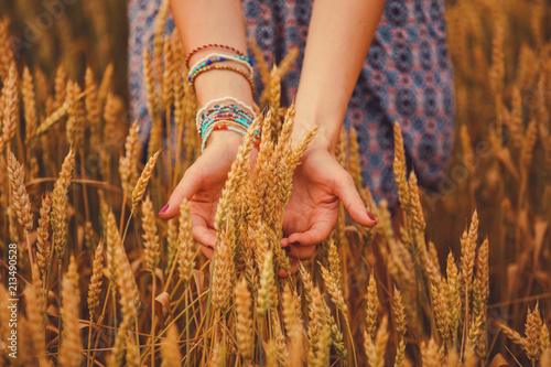 Leinwanddruck Bild Girl holding golden wheat in the field.