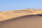 sand dune in sunrise in the sonoran desert - 213527956