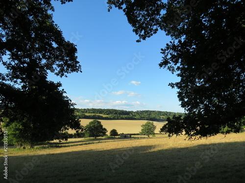 Fotobehang Zwart Beautiful Surrey hillside - English countryside view