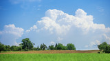 typical agriculture landscape with great cloudscape