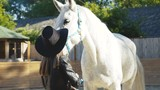 Happy girl in hat poses with smile at white kind horse on arena - 213582393