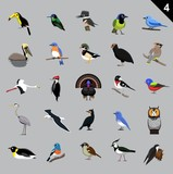 Various Birds Cartoon Vector Illustration 4 - 213589394