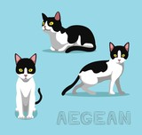 Cat Aegean Cartoon Vector Illustration - 213592513