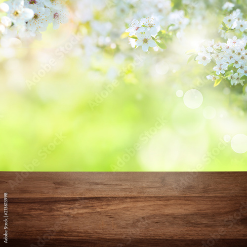 Leinwanddruck Bild Cherry blossoms in park with wooden table