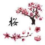 Watercolor sakura set