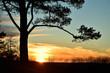 Leinwanddruck Bild - Sonnenuntergang