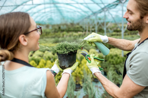 Fridge magnet Gardeners sprinkling water on the conifer bush in the greenhouse