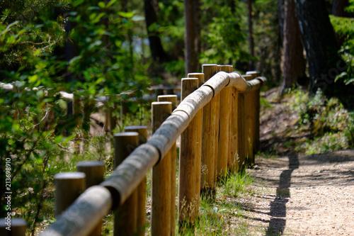 Aluminium Chocoladebruin wooden footpath boardwalk in the bog swamp area