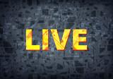 Live black background - 213714355
