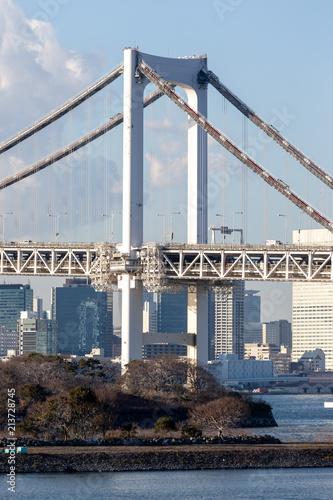 Canvas Tokio Tokyo Bay with Rainbow Bridge in Odaiba city skyline