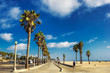 Boardwalk of Venince beach with palms, Los Angeles, USA