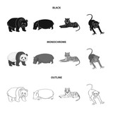 Bamboo bear, hippopotamus, wild animal tiger, monkey . Wild animal set collection icons in black,monochrome,outline style vector symbol stock illustration web. - 213747134