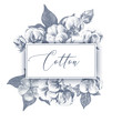 Background with hand drawn cotton branches - 213751719