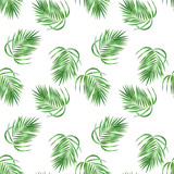 Palm tree leaves seamless pattern - 213751927