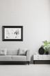 Photo in a black, thick frame on a gray wall, white sideboard and a gray sofa in a in a stylish living room interior with place for a coffee table.